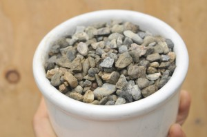 Gravel is the most commonly used growing medium in aquaponics.