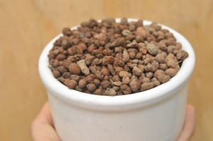 Hydroton clay pellets are probably the easiest to work with of all aquaponic growing mediums.